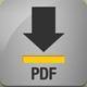 pdf_grau_icon